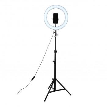 Кільцева лампа 36см зі штативом 210см AC Prof