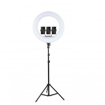 Кільцева лампа 54см LED RL-21 зі штативом 160см AC Prof