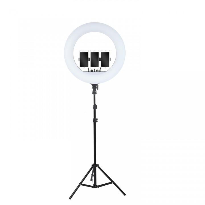 Кольцевая лампа 54см LED RL-21 со штативом 160см AC Prof