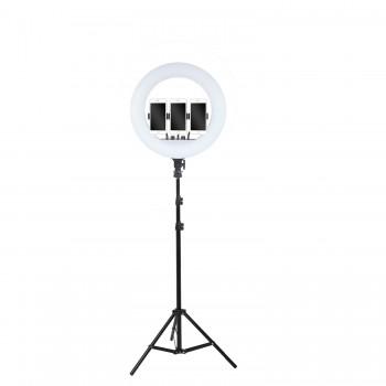 Кільцева лампа 45см LED RL-18 зі штативом 210см AC Prof