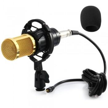 Мікрофон конденсаторний студійний ZEEPIN BM 800