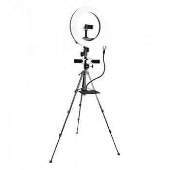 Набір для селфі та трансляцій з лампою 33см Beike QZSD Q5 set3