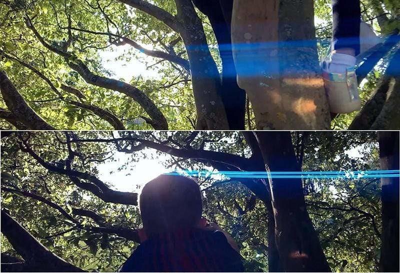 фото изображения через анаморфную линзу Ulanzi 1.33X