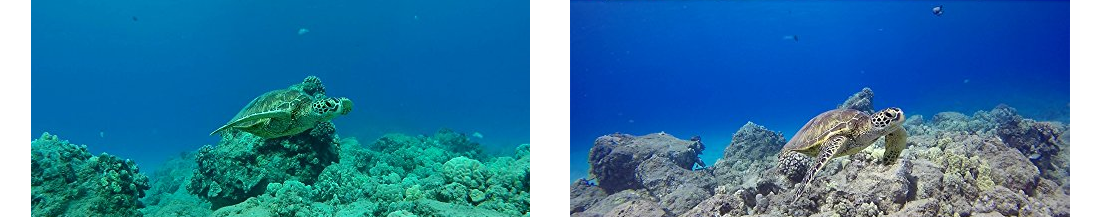изображение под водой голубого тона с фильтром AAHDM-001 и без него